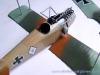 albatros-d-ii-24.jpg
