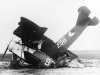 fokker-d-vii-256-crash.jpg