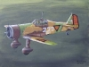 fokker-d-xxi-oil-paint-08.jpg