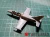 DSCF0715_Albatros