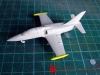 DSCF0720_Albatros