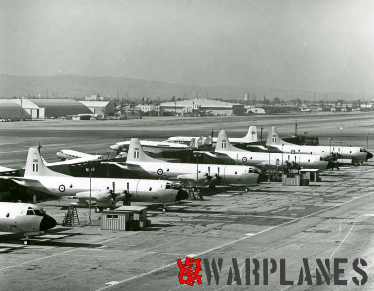 Lockheed P-3B Orion nos. A3292, 293, 294 and 295 R..A.A.F.