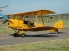 again-tiger-moth-ph-dlk.jpg