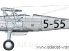 yugoslav-fjuri-5-55.jpg