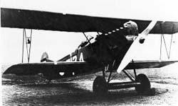 MLD D-VII; the D-24