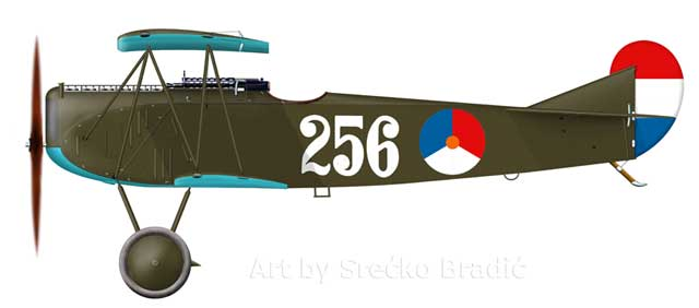Color profile present one of the Fokker D.VII in typical Netherland camouflage and markings pattern