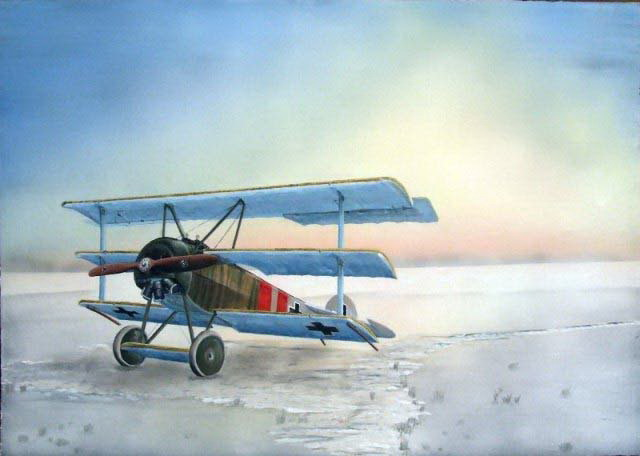Fokker Dr.I in winter landscape