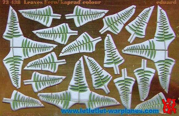 Leaves Fern
