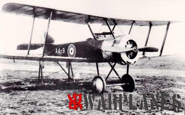 Sopwith Pup A4-9 Australia