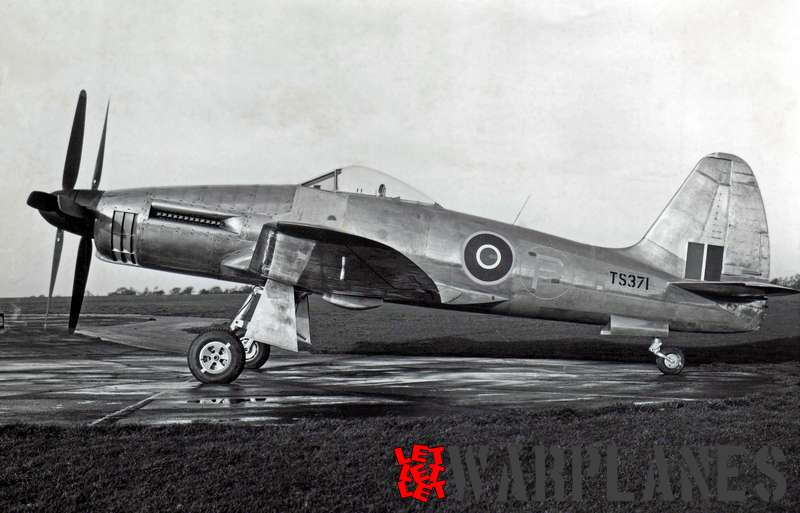 TS371, the first Wyvern prototype with a Rolls Royce Eagle engine. The photo was taken in December 1946 before its first flight. It has a bare metal colour scheme