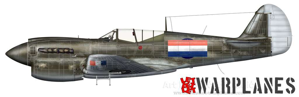 Curtiss P-40N Dutch C3-525
